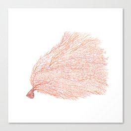 Watercolor Coral Sea fan Canvas Print