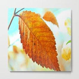 Orange Leaf Metal Print