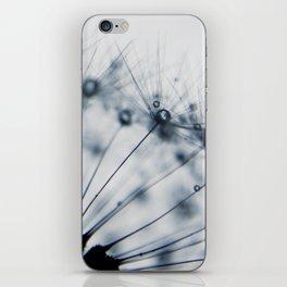 dandelion blue XV iPhone Skin
