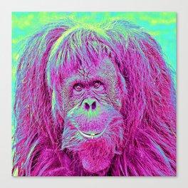 Animal ArtStudio Orang Canvas Print