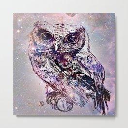 owl2 Metal Print