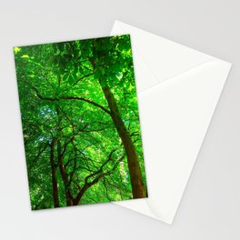 Maple Canopy, Dreamy and Magical Light Stationery Cards