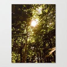 Summershine Canvas Print