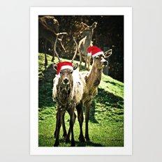 Tis The Season - Reindeer Art Print