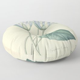 nymphaea coerulea Redoute Roses 4 Floor Pillow