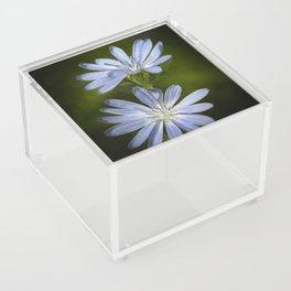 Wild Flowers Acrylic Box