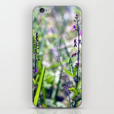 I Dream in Shades of Purple iPhone & iPod Skin