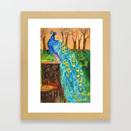 Peacock Pre-Dawn Framed Art Print