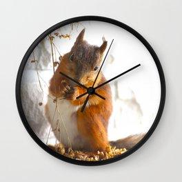 Mommy Squirrel  Wall Clock