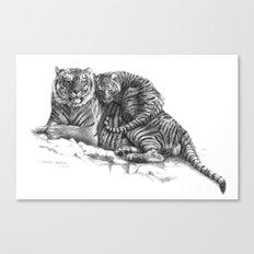 Tiger and Cub G2011-023 Canvas Print