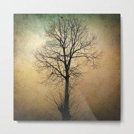 Waltz of a tree Metal Print