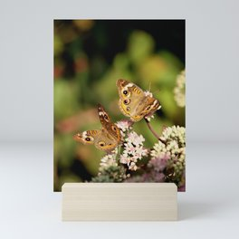 Butterfly Dance Mini Art Print