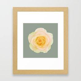 bed of roses: texas Framed Art Print