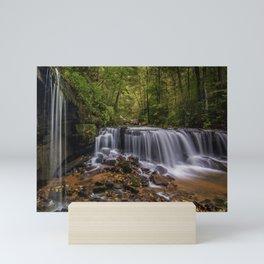 beautiful nature north carolina pearsons falls trees saluda forest pearson's falls waterfall Mini Art Print