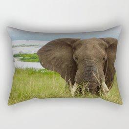 A Walk Along the Nile Rectangular Pillow