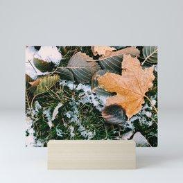 Autumn leaves in winter Mini Art Print
