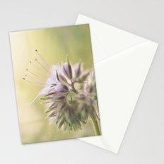 Phacelia Stationery Cards