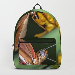 Butterfly on a flower Backpack