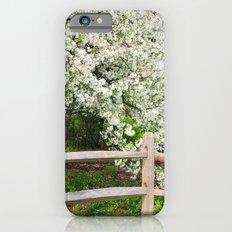 Crab Apple in bloom Slim Case iPhone 6s