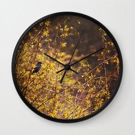 golden hour. Wall Clock
