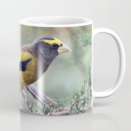 Poised: Evening Grosbeak Coffee Mug