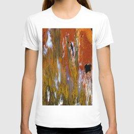 Cady Mountain Tube Agate T-shirt