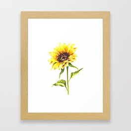 Watercolor Sunflower Framed Art Print