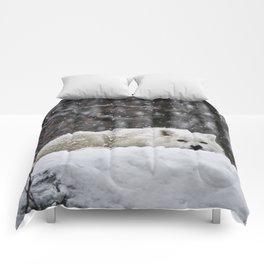 Dreams of warmer weather Comforters