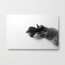 Leaf in Natural light Metal Print