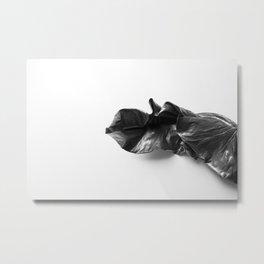 Leaf in Natural light Metal Print