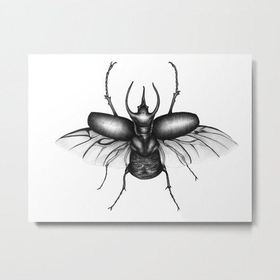 Beetle Wings Metal Print