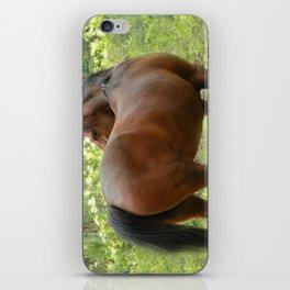 Beautiful Mare iPhone Skin