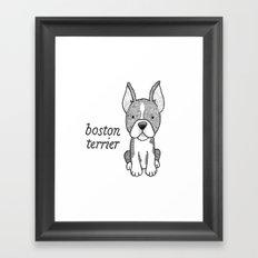 Dog Breeds: Boston Terrier Framed Art Print