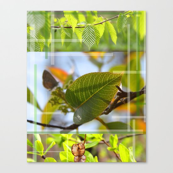 The Leaf And The Distant Butterfly  Canvas Print