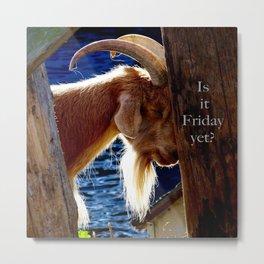 Is it Friday yet??? Metal Print