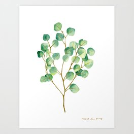 Eucalyptus 1 Art Print