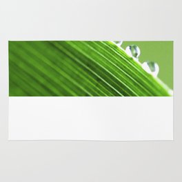 On The Edge Of Green - Water Drops Macro Rug