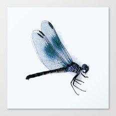 dragonfly #2 Canvas Print