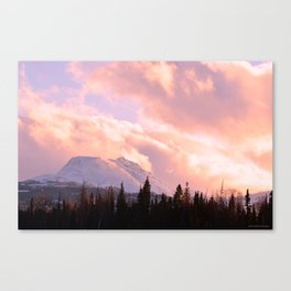 Rose Quartz Turbulence Canvas Print
