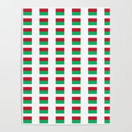 Flag of Madagascar -Malagasy,Madagasikara,Malgache,Bantu,Merina,Antananarivo. Poster