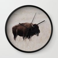oklahoma Wall Clocks featuring Bison, Oklahoma by Zak Patterson