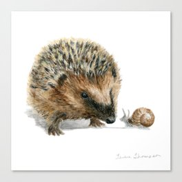 """""""Close Encounter"""" painting of a Hedgehog and Snail by Teresa Thompson Canvas Print"""