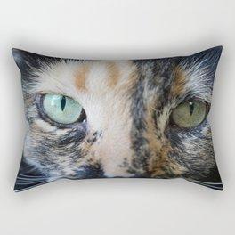 Cat Eyes: Tortoiseshell cat named Iris (2) Rectangular Pillow
