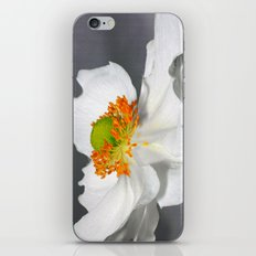 white flower iPhone & iPod Skin