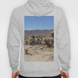Death Valley 1 Hoody