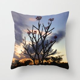Flor de los Ancianos Throw Pillow