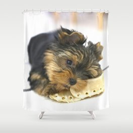 Puppy And the First Chewing Bone Yorkshireterrier #decor #society6 Shower Curtain