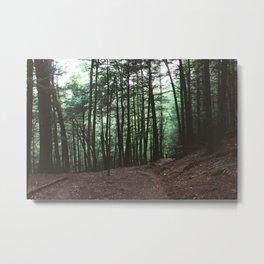 Campbell Falls State Park Metal Print