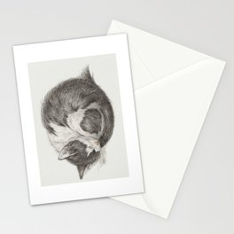 Curled up, sleeping cat Stationery Cards