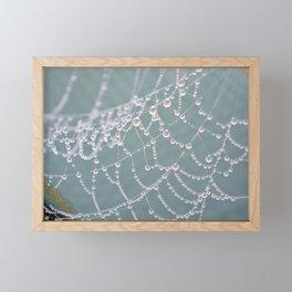 Jewels Framed Mini Art Print